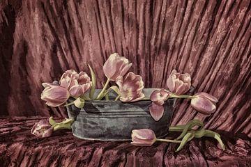 Blütentraum von Claudia Evans