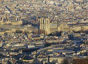 Notre-Dame basiliek van Paris van