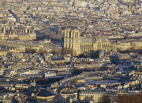Notre-Dame basiliek van Paris van Michaelangelo Photo