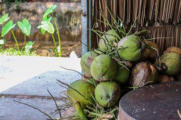 Noix de coco vietnamiennes sur Kevin de Bruin