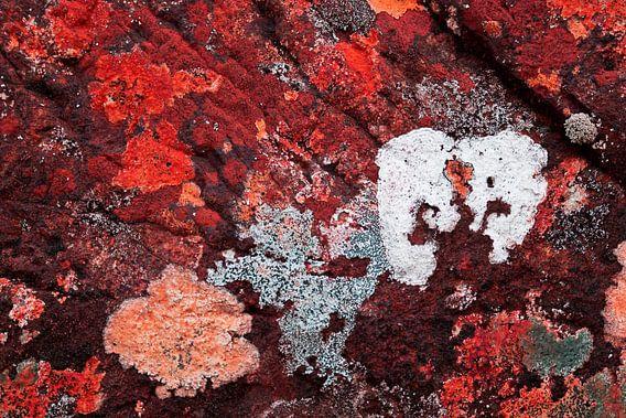 Gekleurde rotsen van Greetje van Son