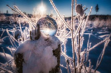 winterlandschap van mario proeter