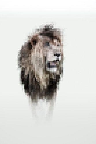 Scarface, een herinnering aan de iconische leeuw