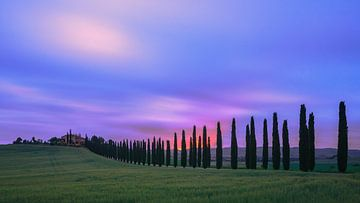 Sunrise Agriturismo Poggio Covili, Tuscany von Henk Meijer Photography