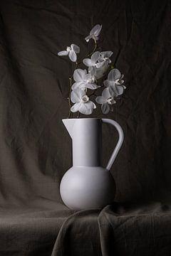 Stilleven vaas met witte orchidee. van Adelbrechtje Campfens