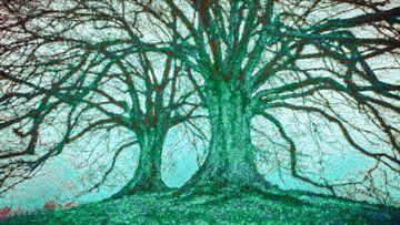 Bäume im Winter von Rietje Bulthuis