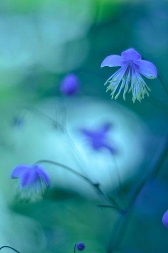 Bloemen sprookje vintage blauw van Sascha van Dam