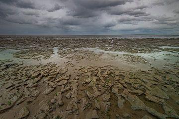 Das Wattenmeer von Gerben van Buiten