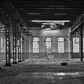 Verlaten fabriek van Ina Muntinga