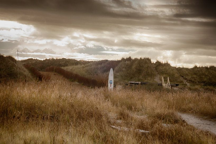 Verlaten duinen van Nella van Zalk