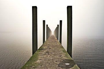 steiger in de mist van Matthijs Temminck