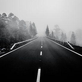 donkere bergweg van Dorit Fuhg