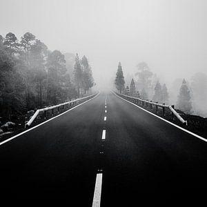 dark mountain road von Dorit Fuhg