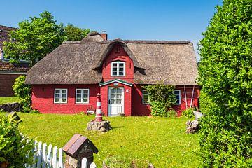 Maison historique à Norddorf sur l'île d'Amrum