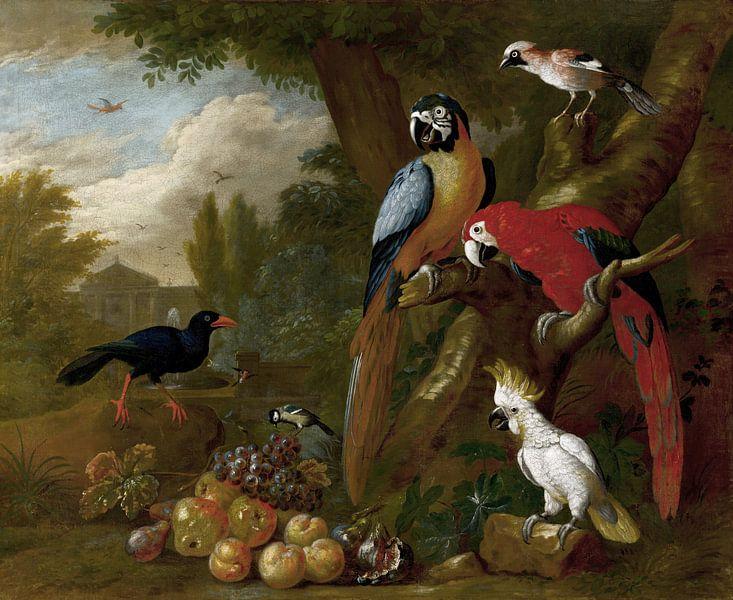 Twee ara's, een kaketoe en een gaai, met fruit, Jakob Bogdány van Meesterlijcke Meesters