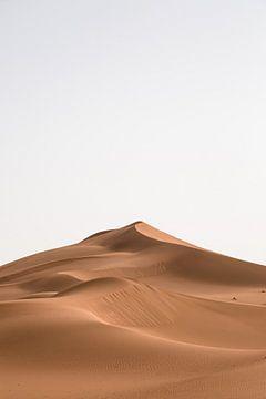 Zandduin in de woestijn van Marokko van Jarno Dorst