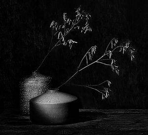 Black velvet.Minimalistisch stilleven in B&W van Saskia Dingemans