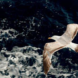 Zeemeeuw vliegt boven blauwe golven van de Middellandse zee in Griekenland van Eyesmile Photography