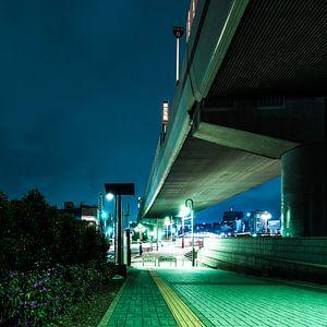 Tokyo - Under the Bridge von Meneer Bos