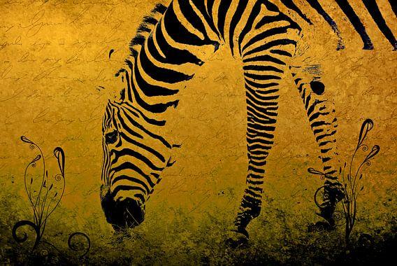 Zebra on Gold