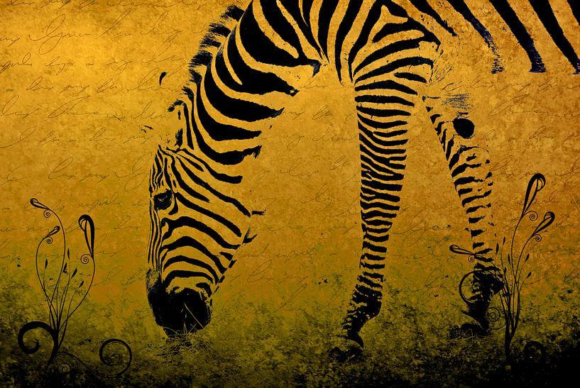 Zebra on Gold van Aimelle ML