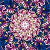 Violet Galaxy van Frans Blok thumbnail