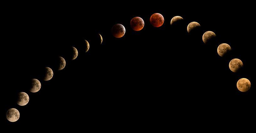 Bloedmaan, maansverduistering van Inge van den Brande