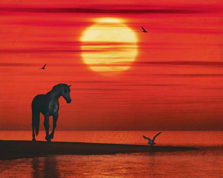 Een paard en een zeemeeuw van Jan Keteleer