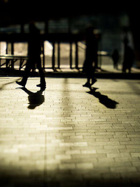 Two shadows van Lex Schulte