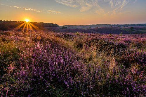 Sunrise Posbank