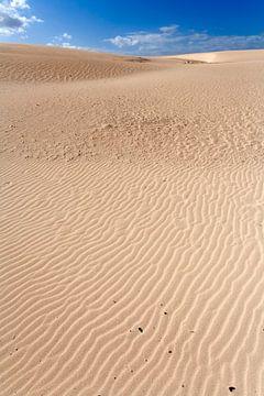 Dunes de sable sur Fuerteventura sur Peter de Kievith Fotografie