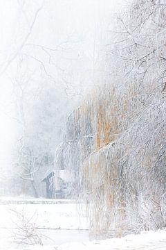 Winter aan het boothuis van