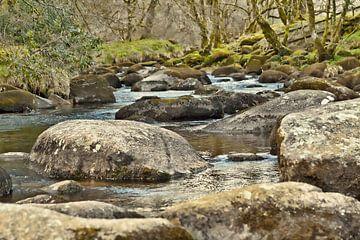 Mystieke sfeer in Nationaal Park Dartmoor , Devon, Engeland van Mieneke Andeweg-van Rijn