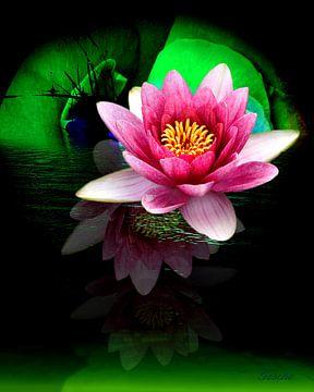 Bloemen schoonheid van Gertrud Scheffler