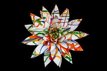 Le végétal comme art sur Rutmer Visser