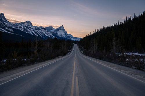 Icefield Parkway, Canada van Thomas Bartelds