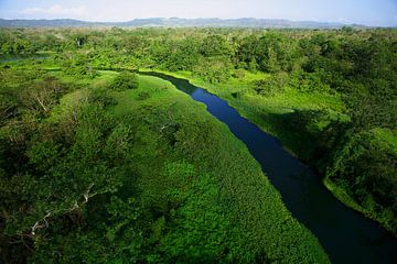 Vue aérienne de la rivière Chagres dans le parc national de Soberania, Panama sur Nature in Stock