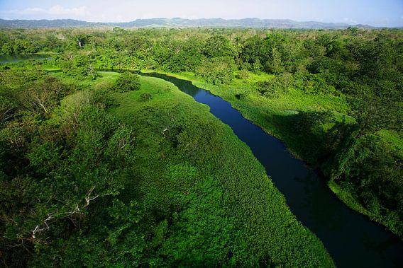 Luchtopname van de  Chagres rivier in Soberania National Park, Panama