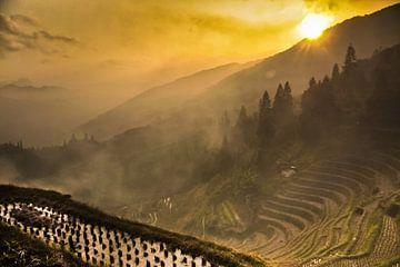 zon en gele mist. Mistig herfstlandschap met rijstterrassen. China, Yangshuo, Longsheng Rijstterrass van Michael Semenov