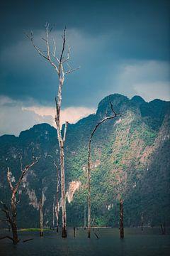 Dode boom in thais meer van Bart Rondeel
