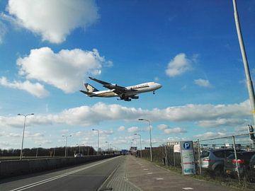 Schiphol Vliegtuig van