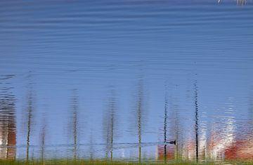Optische Täuschung?  von Ingrid Bargeman