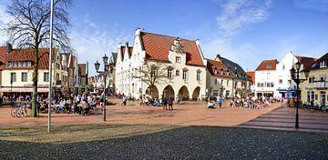 Haltern Stadtpanorama van Edgar Schermaul