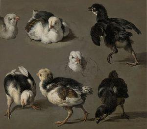 Zeven kuikens - Melchior d'Hondecoeter