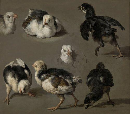 Zeven kuikens - Melchior d'Hondecoeter van Marieke de Koning