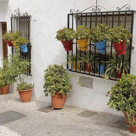 Bloempotten in een straatje in Frigliana van Cora Unk