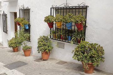 Bloempotten in een straatje in Frigliana von Cora Unk