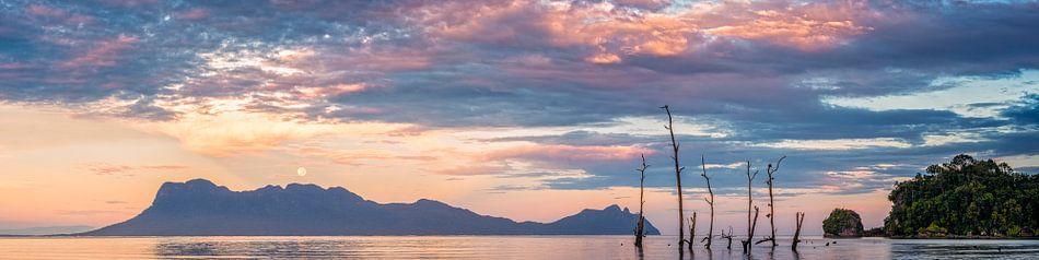 Supermaan panorama van Richard Guijt