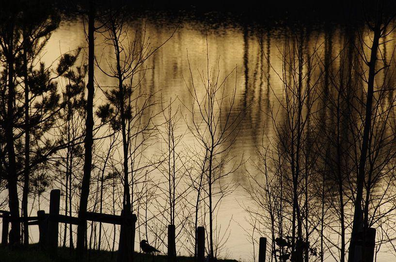 Vogel op oever met zonsondergang met reflectie van de avondzon en bomen op de achtergrond van Judith Spanbroek-van den Broek