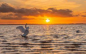 Sonnenuntergang von wilma ten Bhömer
